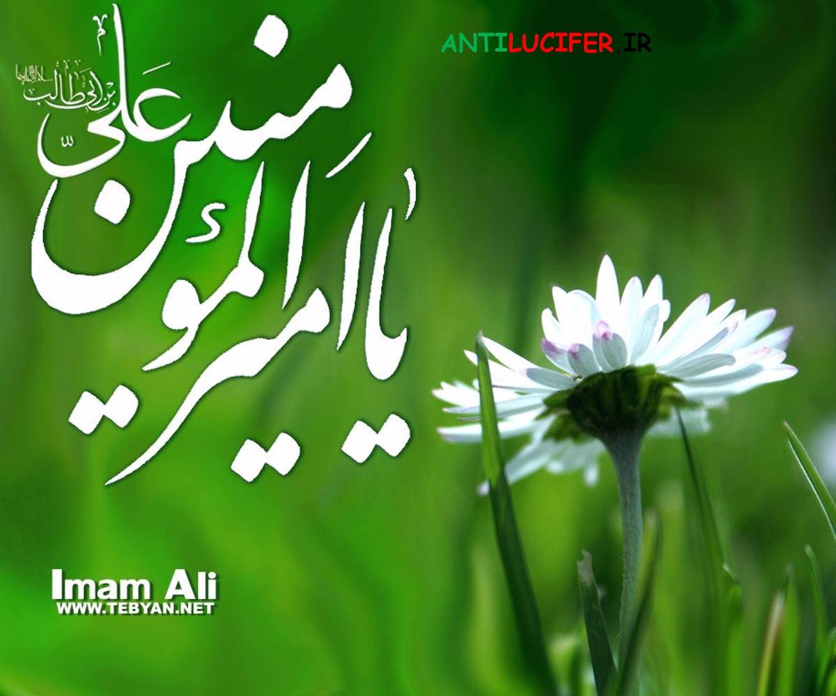 مجموعه تصاویر امام علی+دانکود مجموعه