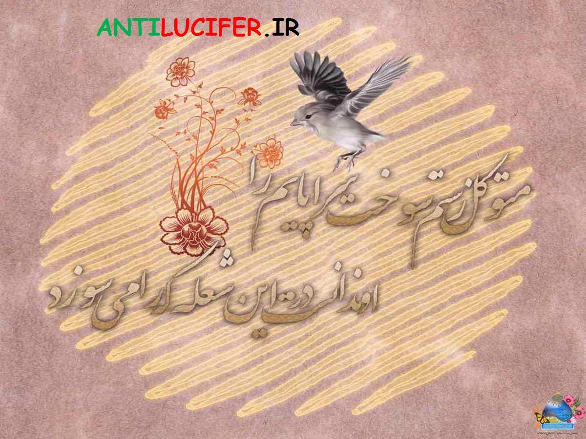 دانلود مجموعه تصاویر ویژه ولادت امام هادی